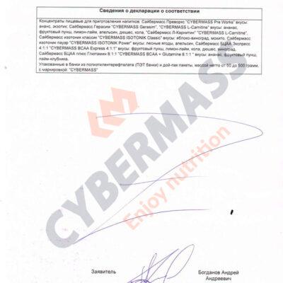 Декларация о соответствии CYBERMASS