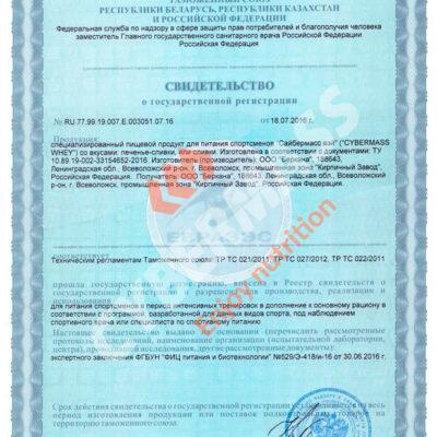 Свидетельство государственной регистрации CYBERMASS
